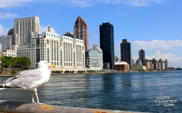 New-York-City-View-from-Roosevelt-Island-2