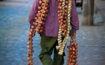 Onion Guy 2