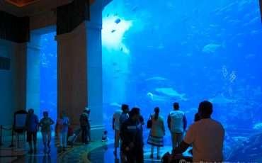 Atlantis City Dubai 7