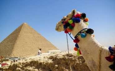 People Climb the Pyramids of Egypt Giza 3