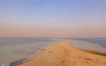 Saudi island White beach 8