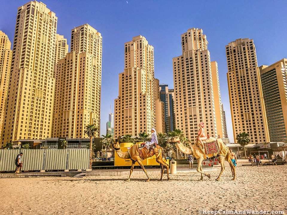 This Photo Shows Dubai in a Nutshell / Jumeirah Beach Why Dubai Should be on Your Bucket List