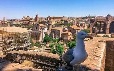 Roman Forum and Palantine Rome Italy 12