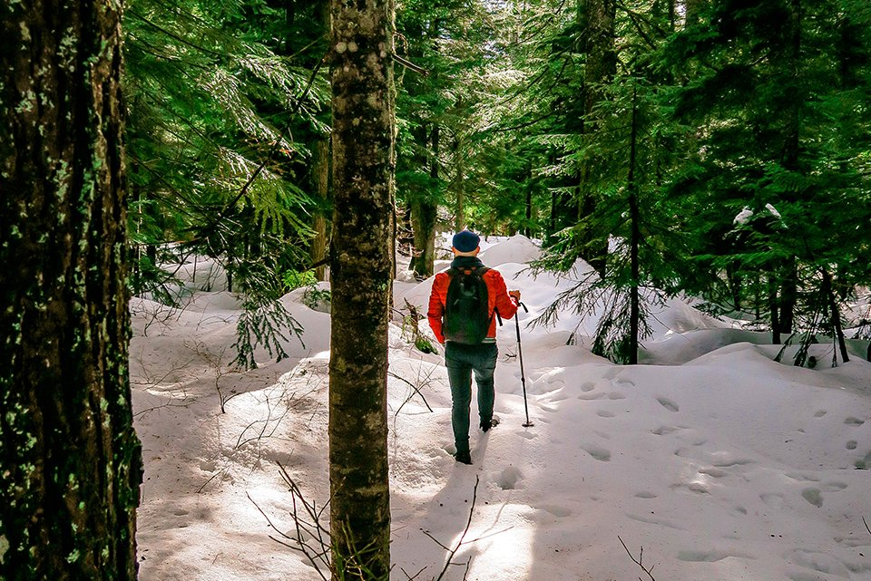0 Cypress Mountain – Hollyburn Lodge Hiking Trail Winter Canada Parks 5