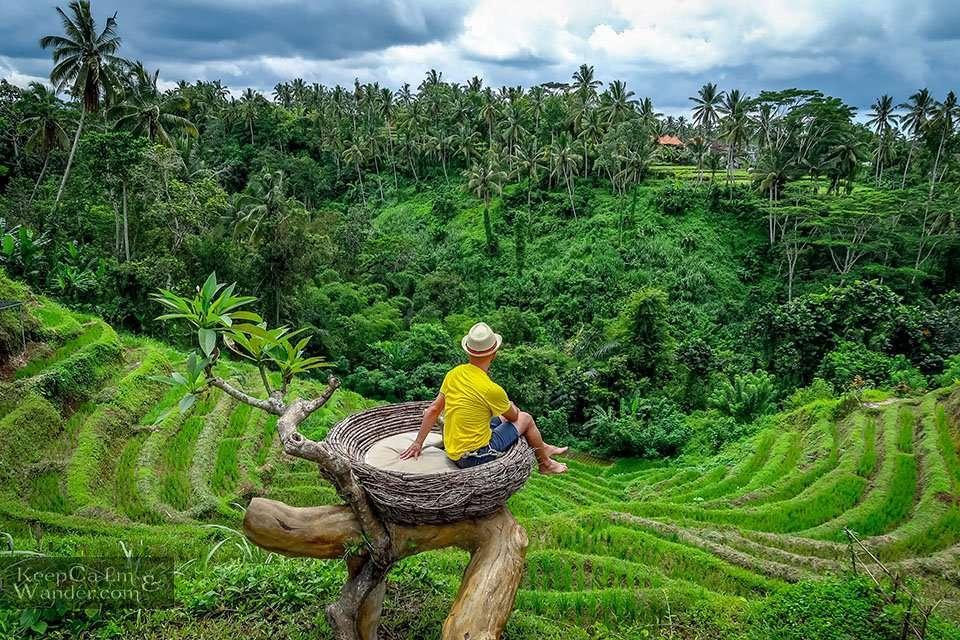 Ubud Swing Aloha in Bali, Indonesia