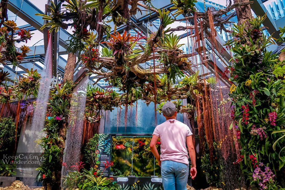 Inside the Floral Fantasy at Gardens by the Bay