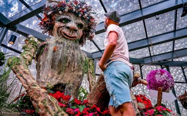 Flower Fantasy Gardens by the Bay Singapore 3
