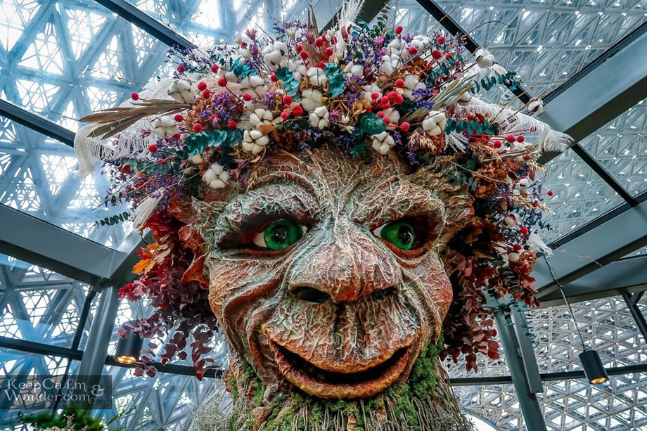 Inside the Floral Fantasy at Gardens by the Bay Singapore Tourist attractions