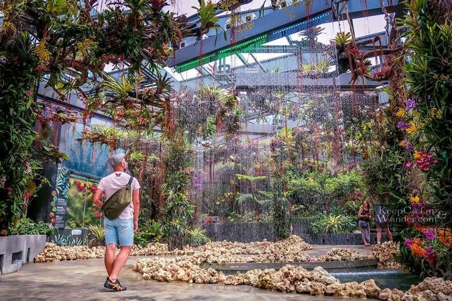 Rainforest Singapore marina Tourist attractions