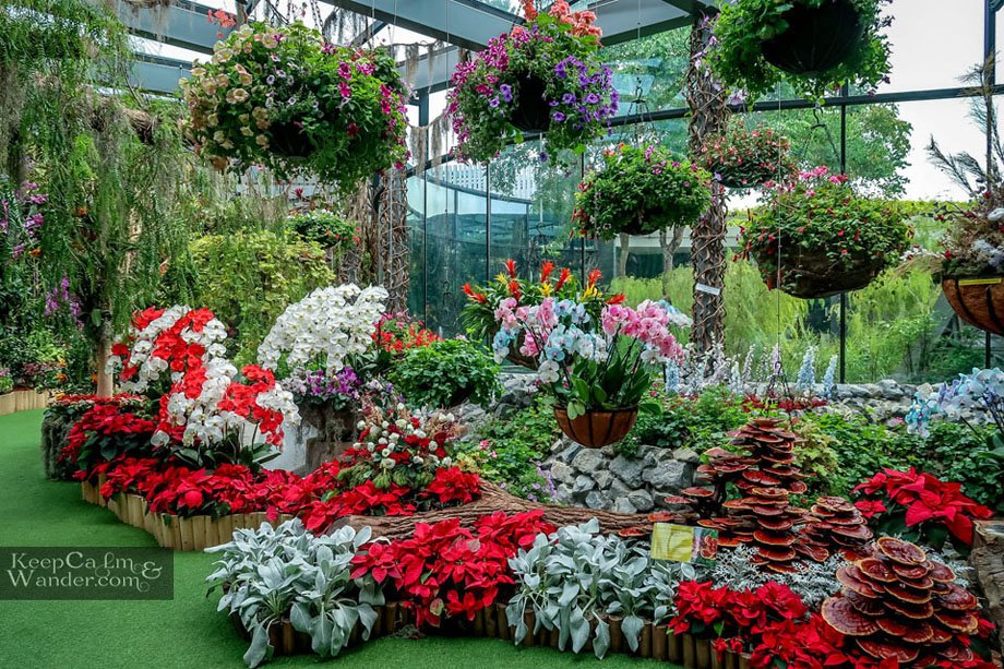 Inside the Floral Fantasy at Gardens by the Bay / Tourist attractions in Singapore