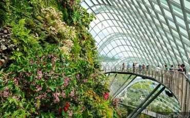 Cloud Forest Park Singapore 8